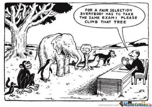 1For-A-Fair-Selection-Everybody-Has-To-Take-The-Same-Exam_787144ec8906c416d5b842d5d9412257
